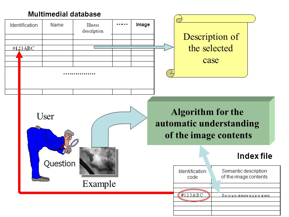 Multimedial database Index file Algorithm for the automatic understanding of the image contents Semantic description of the image contents Identification code Identification Name Illness description Images  #123ABC