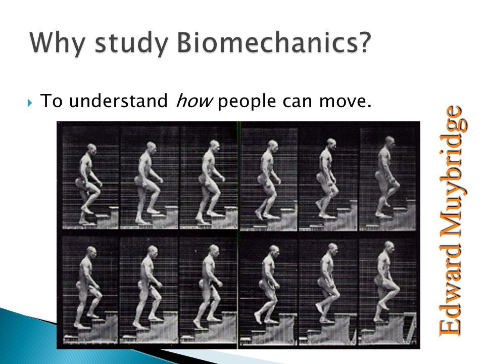  To understand how people can move. Edward Muybridge