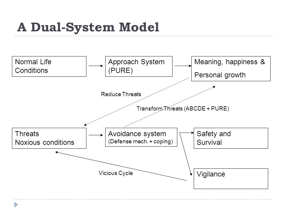 Normal Life Conditions Approach System (PURE) Meaning, happiness & Personal growth Threats Noxious conditions Avoidance system (Defense mech. + coping