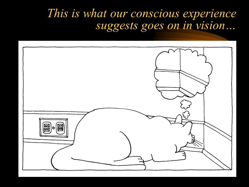 This is what our conscious experience suggests goes on in vision…