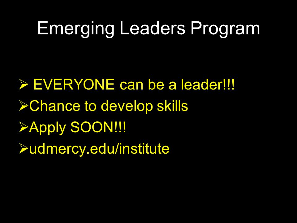 Emerging Leaders Program  EVERYONE can be a leader!!.