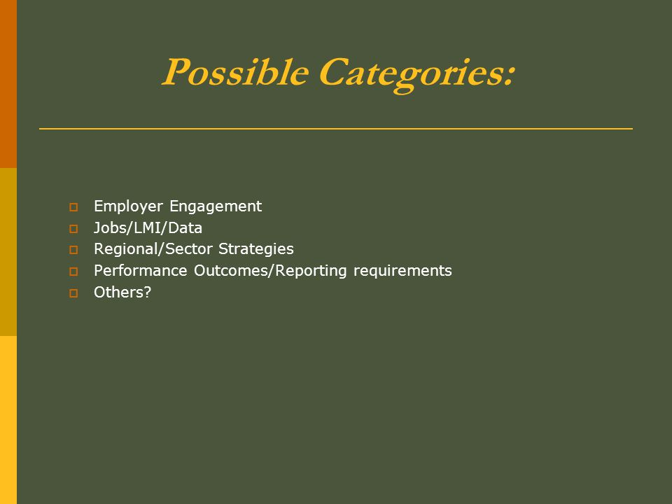 Possible Categories:  Employer Engagement  Jobs/LMI/Data  Regional/Sector Strategies  Performance Outcomes/Reporting requirements  Others