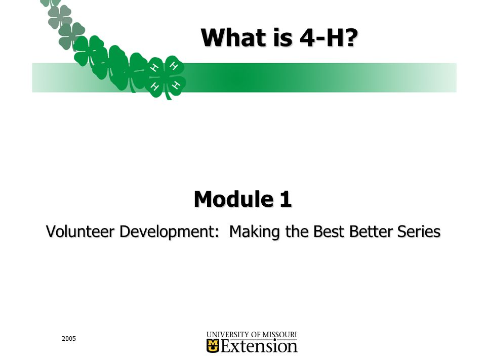 2005 What is 4-H Module 1 Volunteer Development: Making the Best Better Series