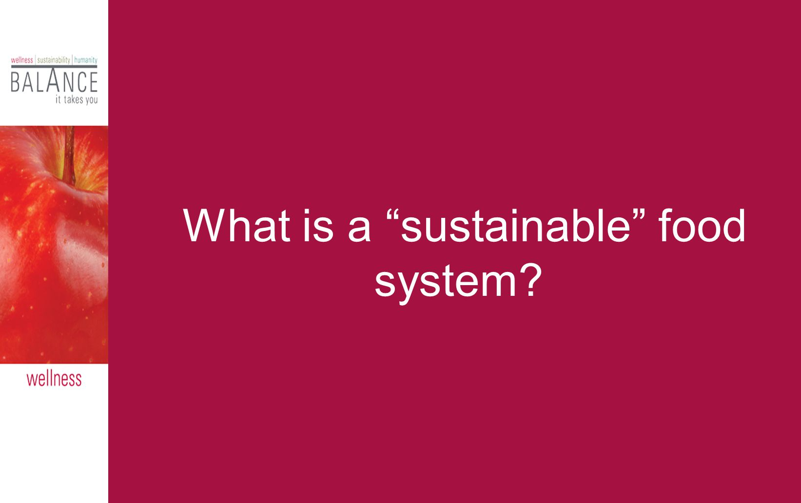 What is a sustainable food system