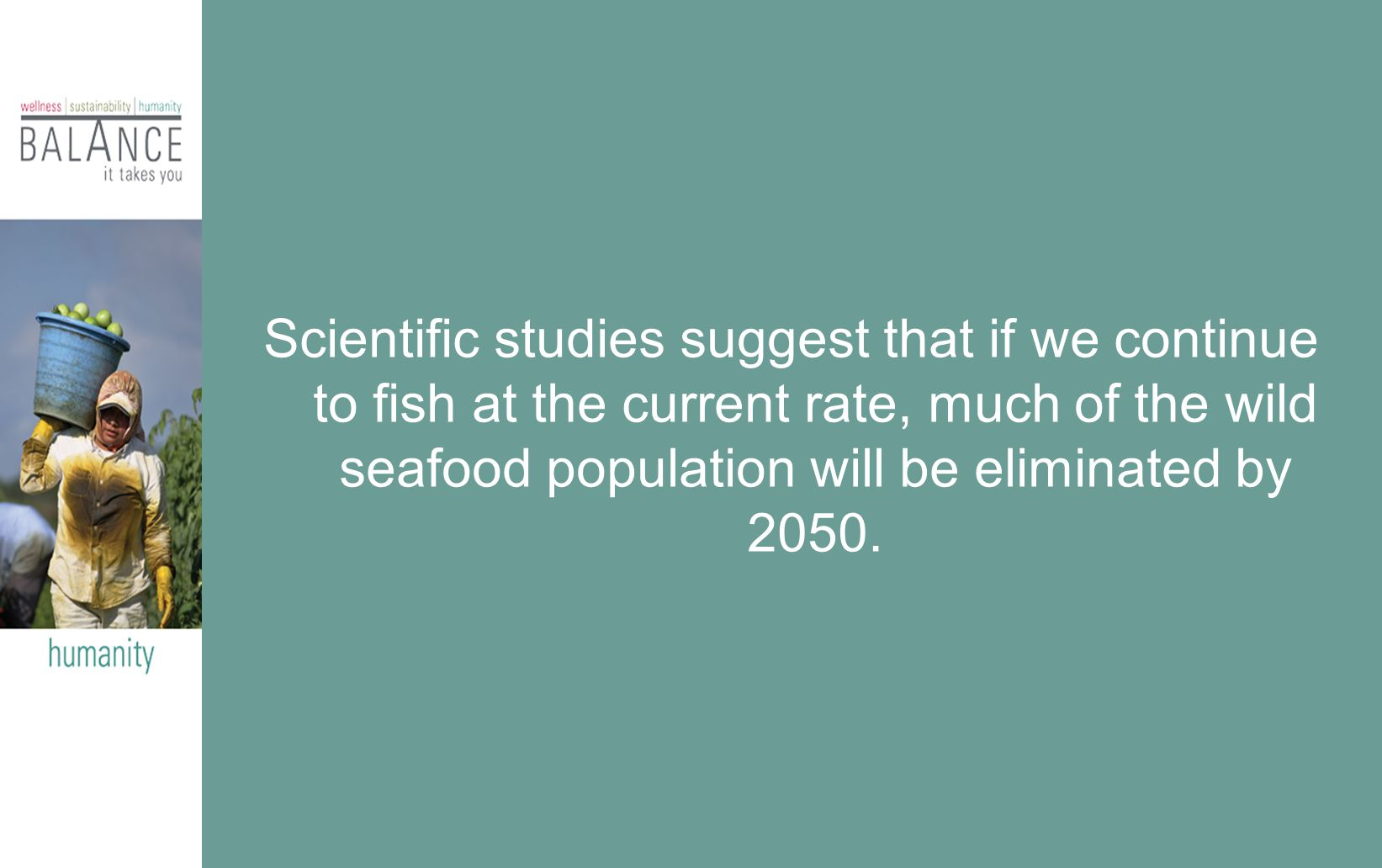 Scientific studies suggest that if we continue to fish at the current rate, much of the wild seafood population will be eliminated by 2050.