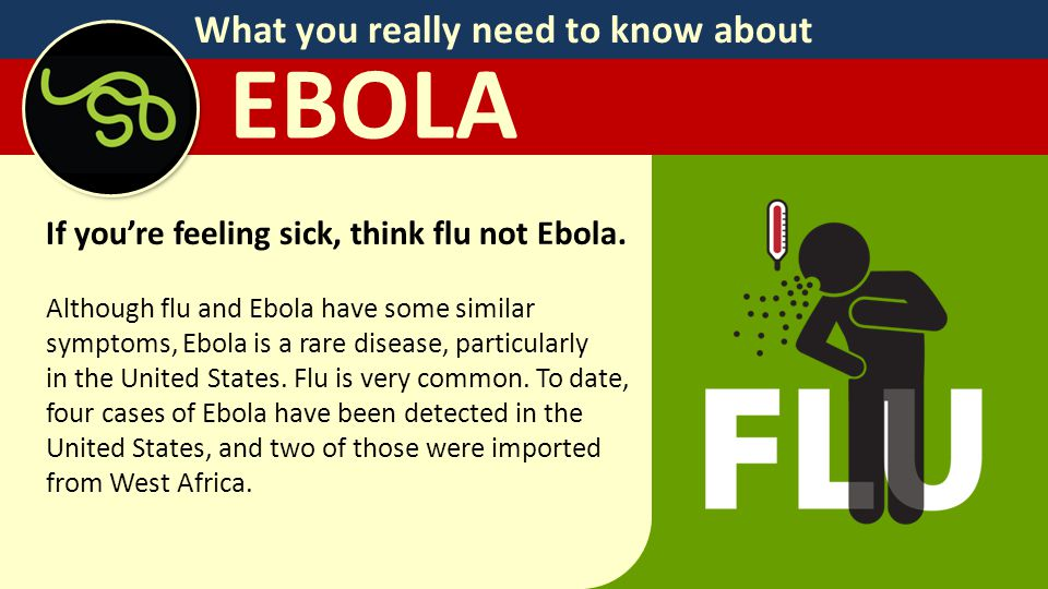 What you really need to know about EBOLA If you're feeling sick, think flu not Ebola.