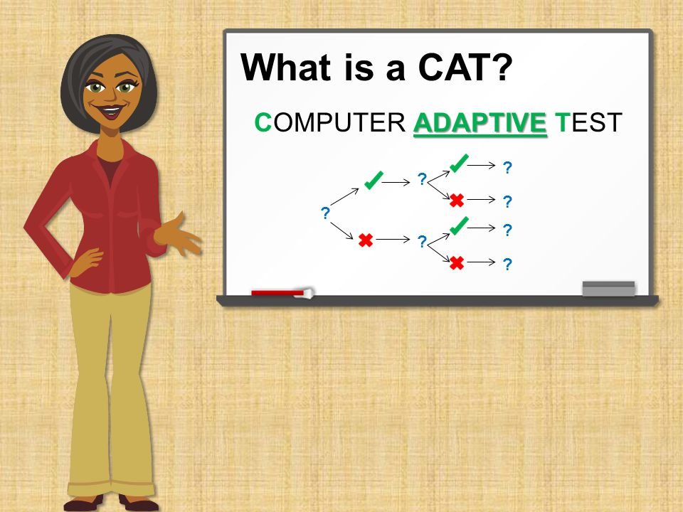 What is a CAT ADAPTIVE COMPUTER ADAPTIVE TEST