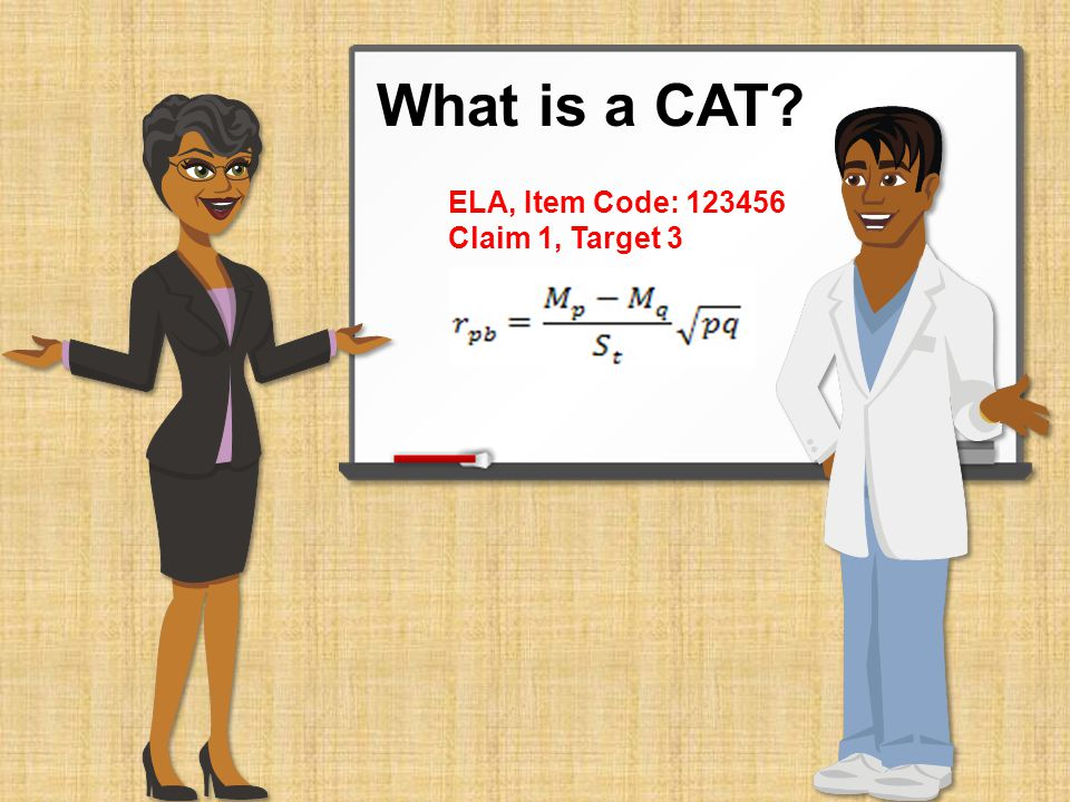 What is a CAT ELA, Item Code: Claim 1, Target 3