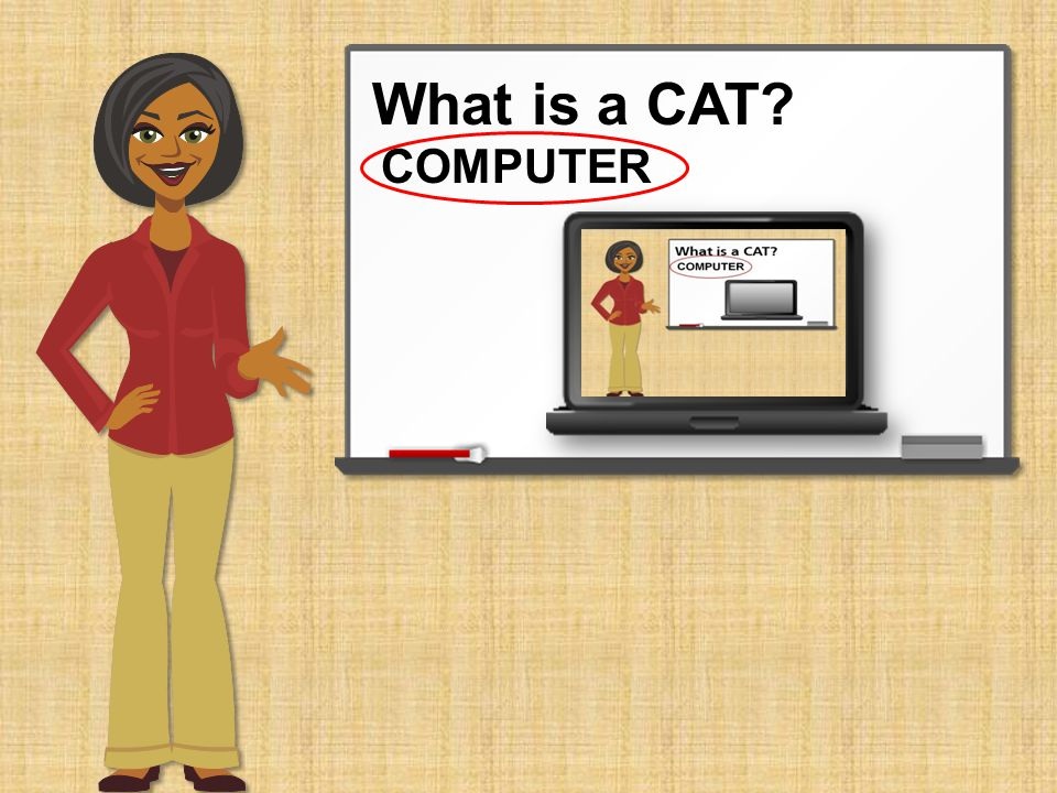 What is a CAT.