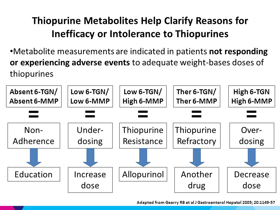 Thiopurine Metabolites Help Clarify Reasons for Inefficacy or Intolerance to Thiopurines Metabolite measurements are indicated in patients not responding or experiencing adverse events to adequate weight-bases doses of thiopurines Absent 6-TGN/ Absent 6-MMP Non- Adherence Education = Under- dosing Increase dose Low 6-TGN/ Low 6-MMP = Adapted from Gearry RB et al J Gastroenterol Hepatol 2005; 20: High 6-TGN High 6-MMP Over- dosing Decrease dose = Low 6-TGN/ High 6-MMP Thiopurine Resistance Allopurinol = Ther 6-TGN/ Ther 6-MMP Thiopurine Refractory Another drug =