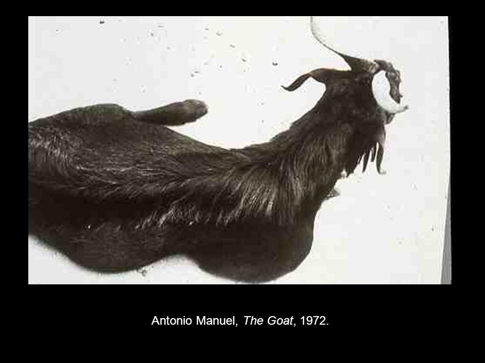 Antonio Manuel, The Goat, 1972.