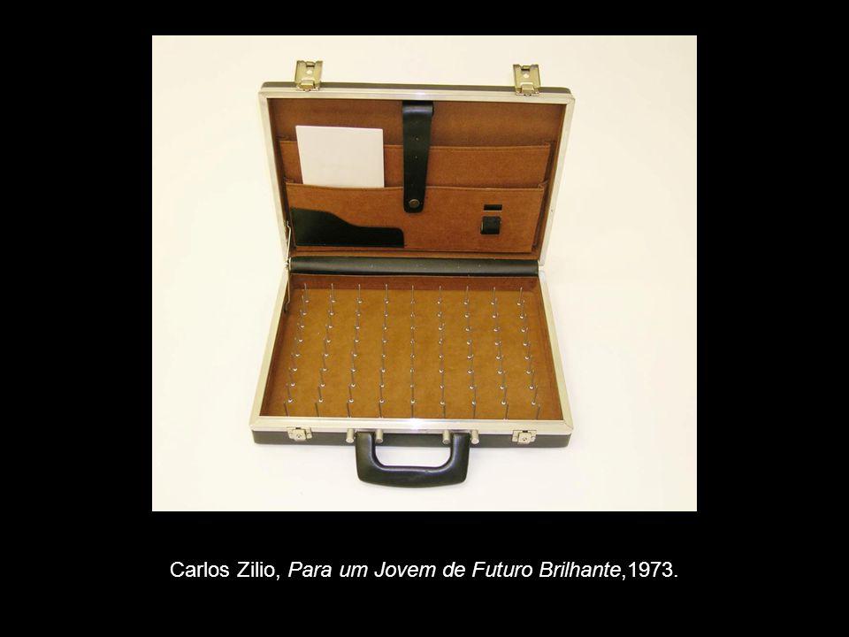 Carlos Zilio, Para um Jovem de Futuro Brilhante,1973.