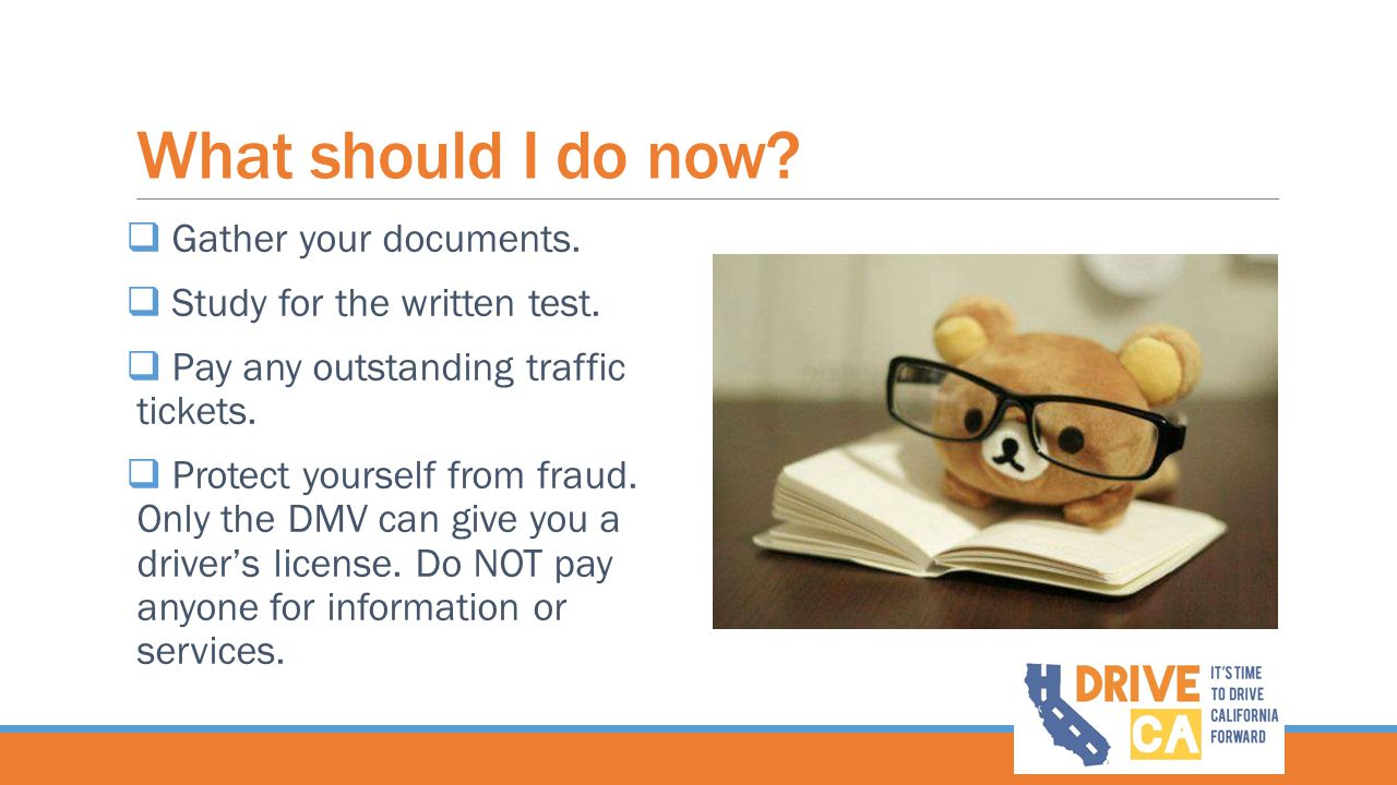 What should I do now?  Gather your documents.  Study for the written test.  Pay any outstanding traffic tickets.  Protect yourself from fraud. Onl