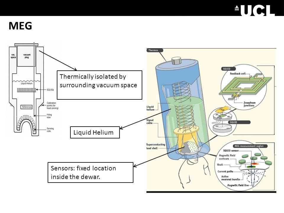 MEG Sensors: fixed location inside the dewar.