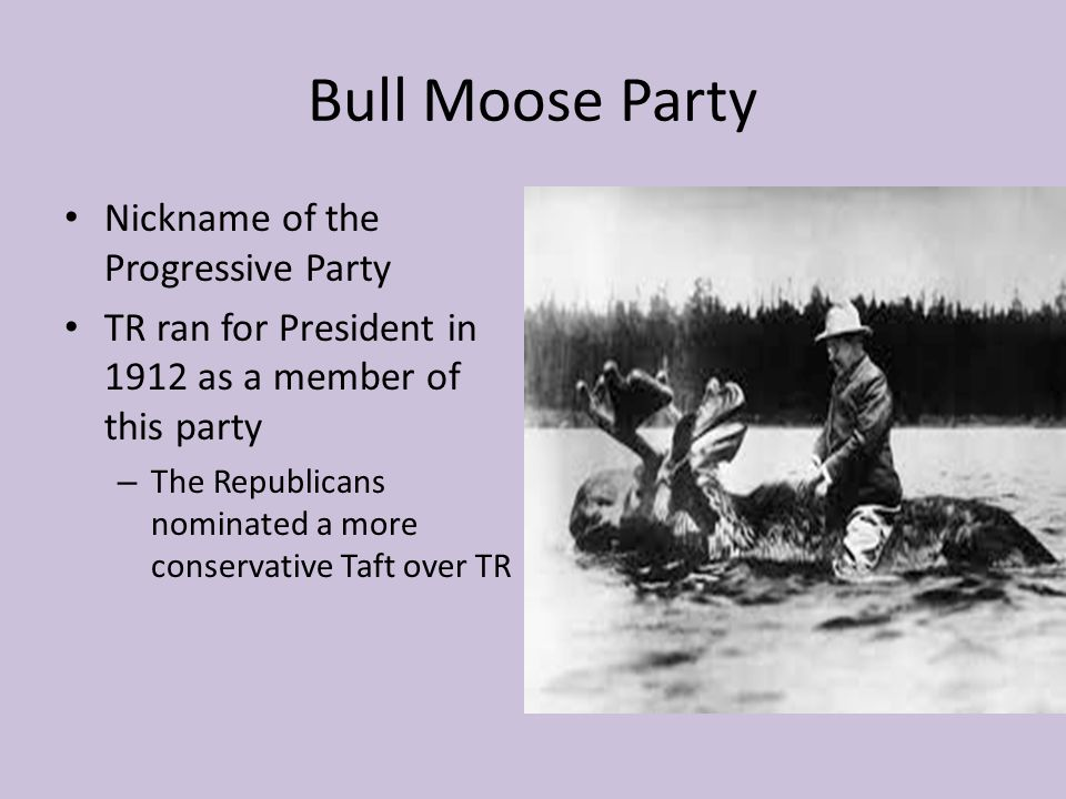 Bull Moose Party Nickname of the Progressive Party TR ran for President in 1912 as a member of this party – The Republicans nominated a more conservat