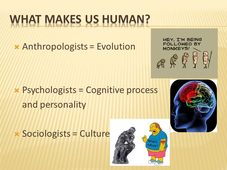  Anthropologists = Evolution  Psychologists = Cognitive process and personality  Sociologists = Culture