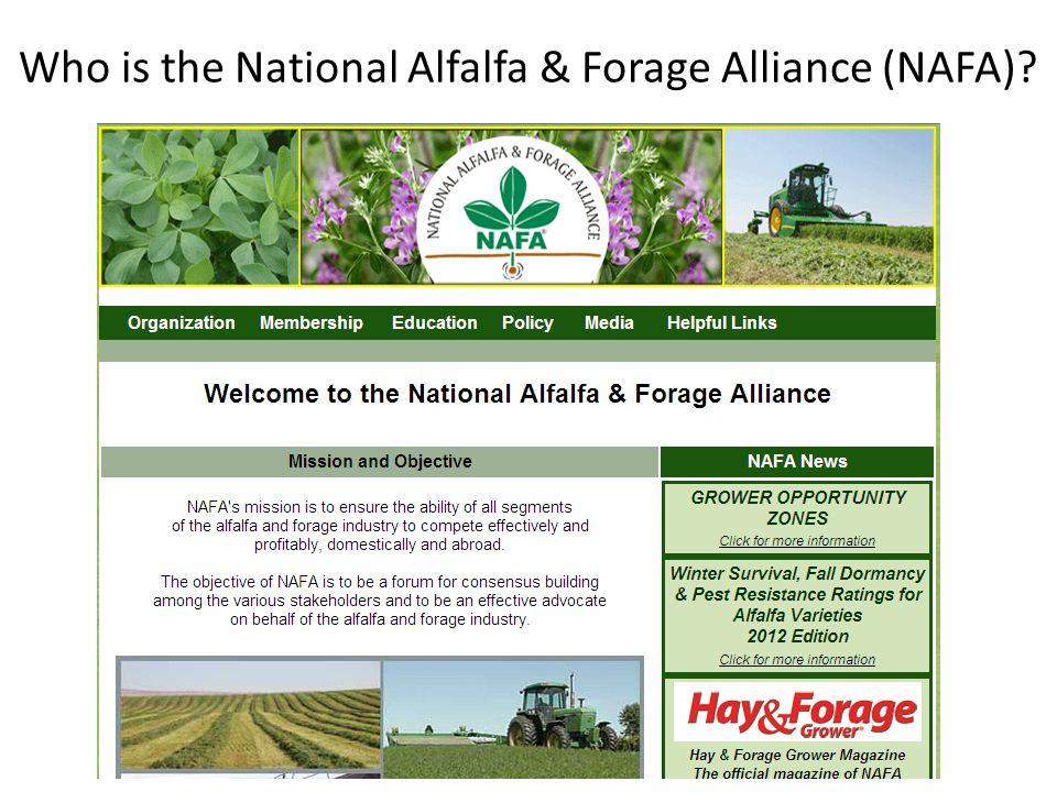 Who is the National Alfalfa & Forage Alliance (NAFA)?