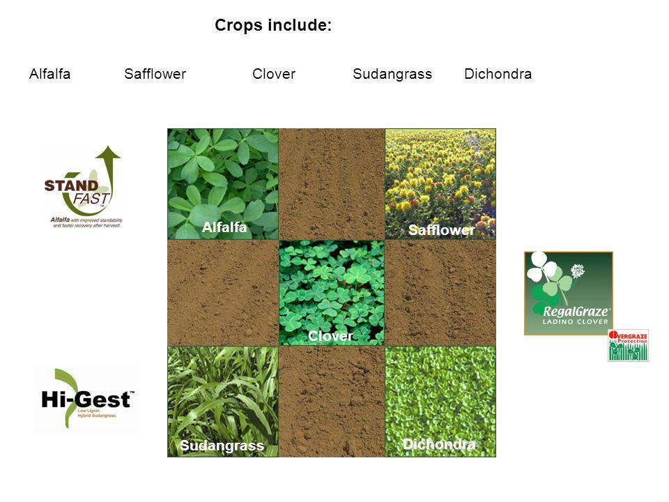 Crops include: AlfalfaSafflowerCloverSudangrassDichondra Clover Alfalfa Safflower Dichondra Sudangrass