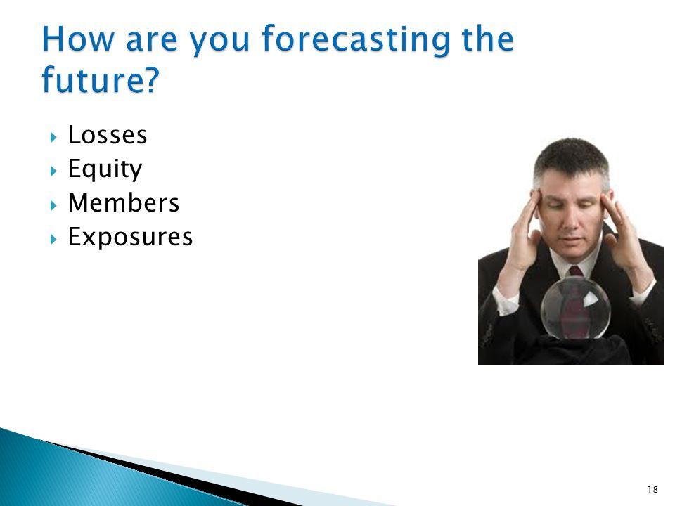  Losses  Equity  Members  Exposures 18