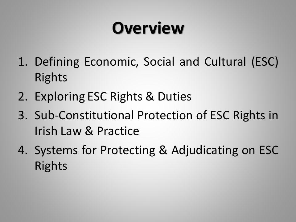 1. Defining Economic, Social & Cultural (ESC) Rights