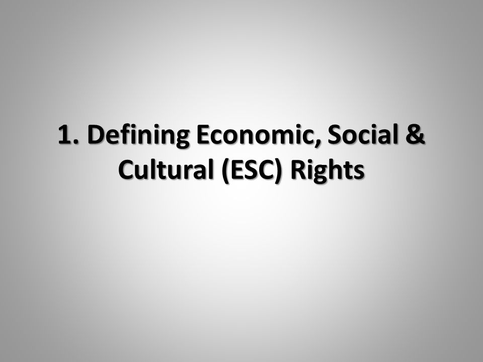 1. Defining Economic, Social & Cultural (ESC) Rights