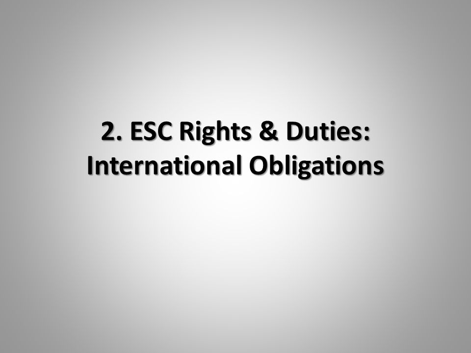 2. ESC Rights & Duties: International Obligations