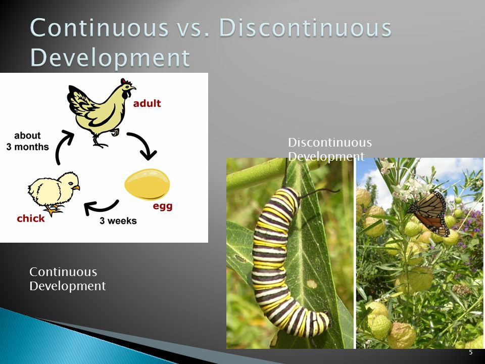 Continuous Development Discontinuous Development 5