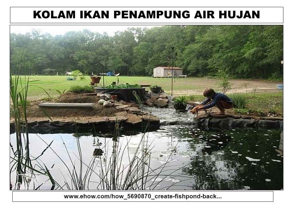 KOLAM IKAN PENAMPUNG AIR HUJAN www.ehow.com/how_5690870_create-fishpond-back...