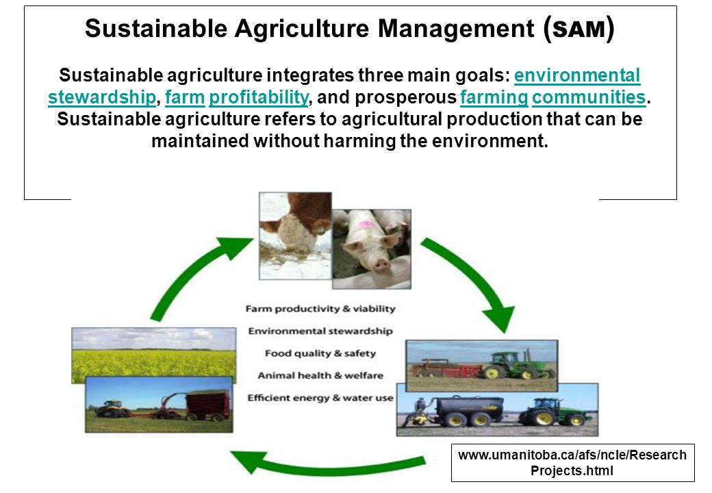 Sustainable Agriculture Management ( SAM ) Sustainable agriculture integrates three main goals: environmental stewardship, farm profitability, and pro