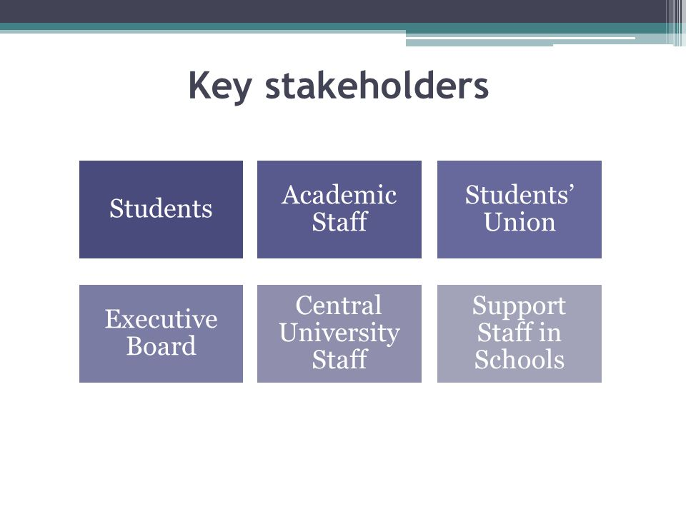 Students Academic Staff Students' Union Executive Board Central University Staff Support Staff in Schools Key stakeholders