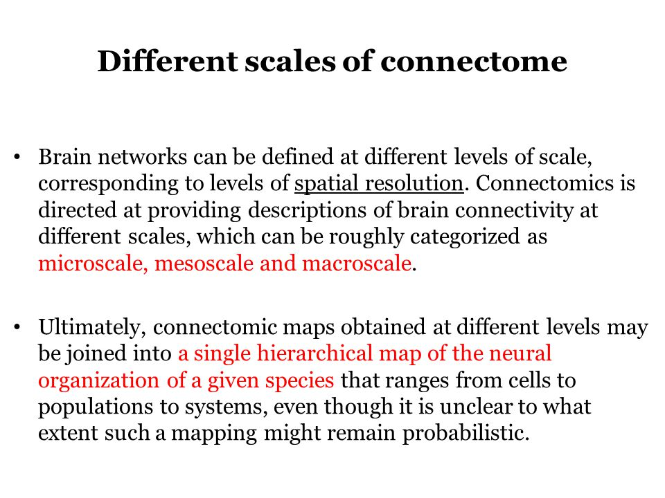 Different scales of connectome Brain networks can be defined at different levels of scale, corresponding to levels of spatial resolution.