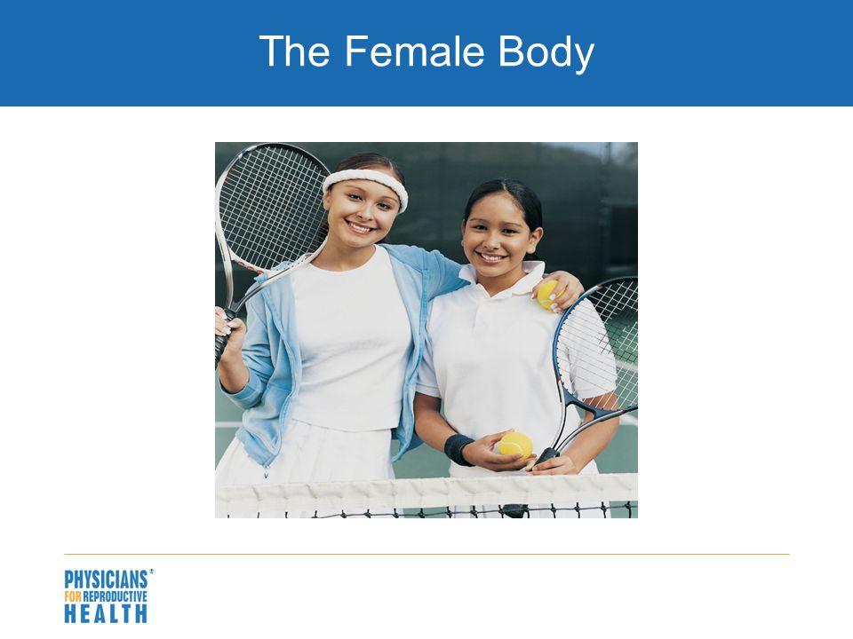  The Female Body