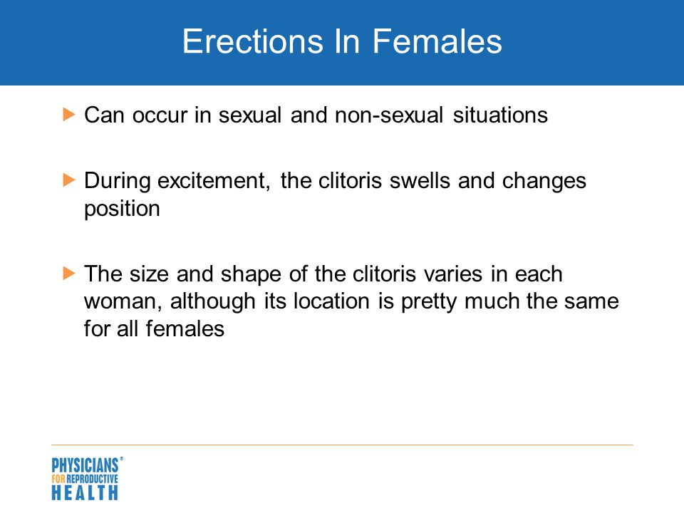  Erections In Females  Can occur in sexual and non-sexual situations  During excitement, the clitoris swells and changes position  The size and sh