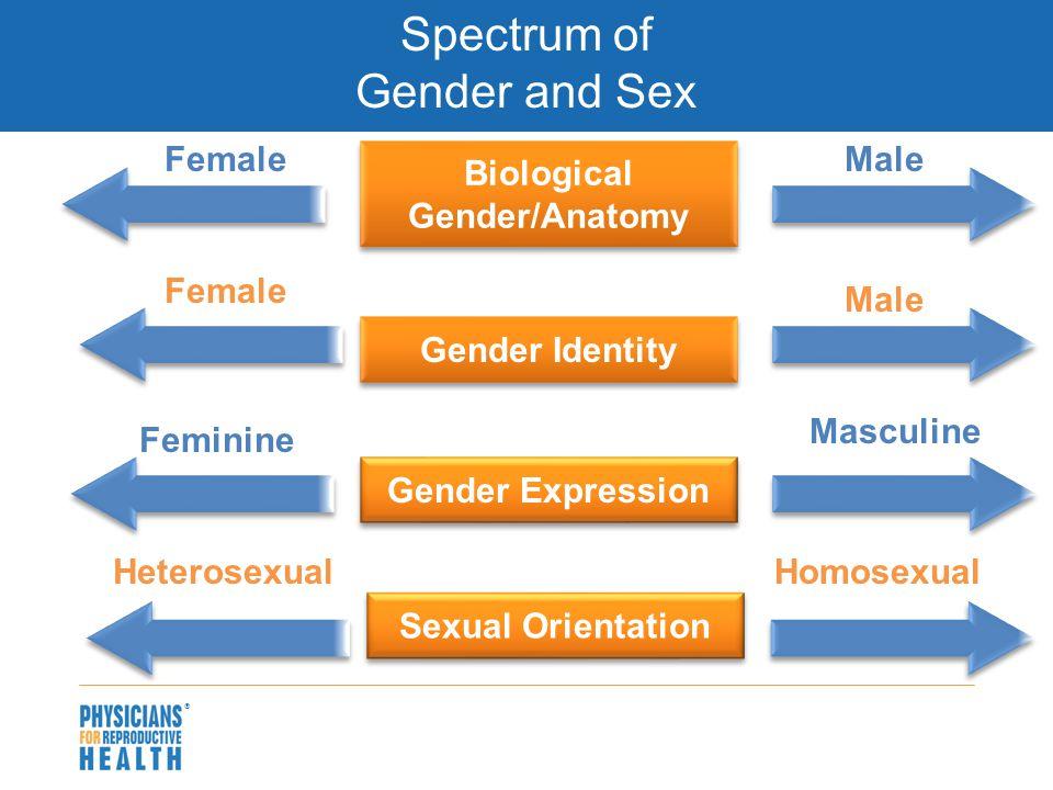  Spectrum of Gender and Sex Biological Gender/Anatomy Male Gender Identity Feminine Male Gender Expression Female Masculine HeterosexualHomosexual Sexual Orientation Female