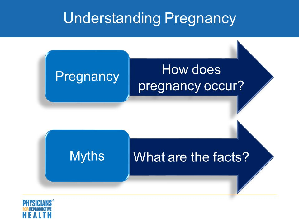  What are the facts? How does pregnancy occur? Understanding Pregnancy Pregnancy Myths