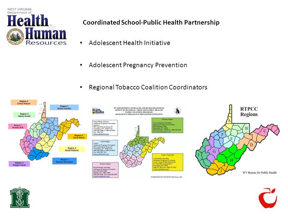 Coordinated School-Public Health Partnership Adolescent Health Initiative Adolescent Pregnancy Prevention Regional Tobacco Coalition Coordinators