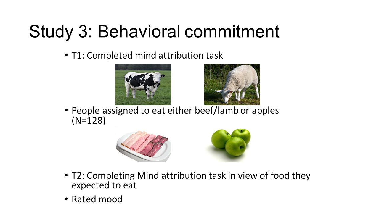 Study 3: Behavioral commitment T1: Completed mind attribution task People assigned to eat either beef/lamb or apples (N=128) T2: Completing Mind attribution task in view of food they expected to eat Rated mood
