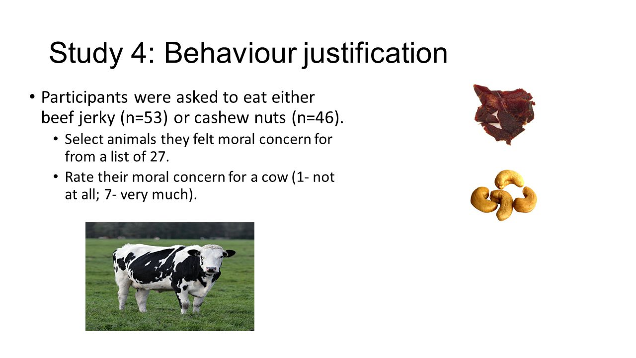 Study 4: Behaviour justification Participants were asked to eat either beef jerky (n=53) or cashew nuts (n=46).