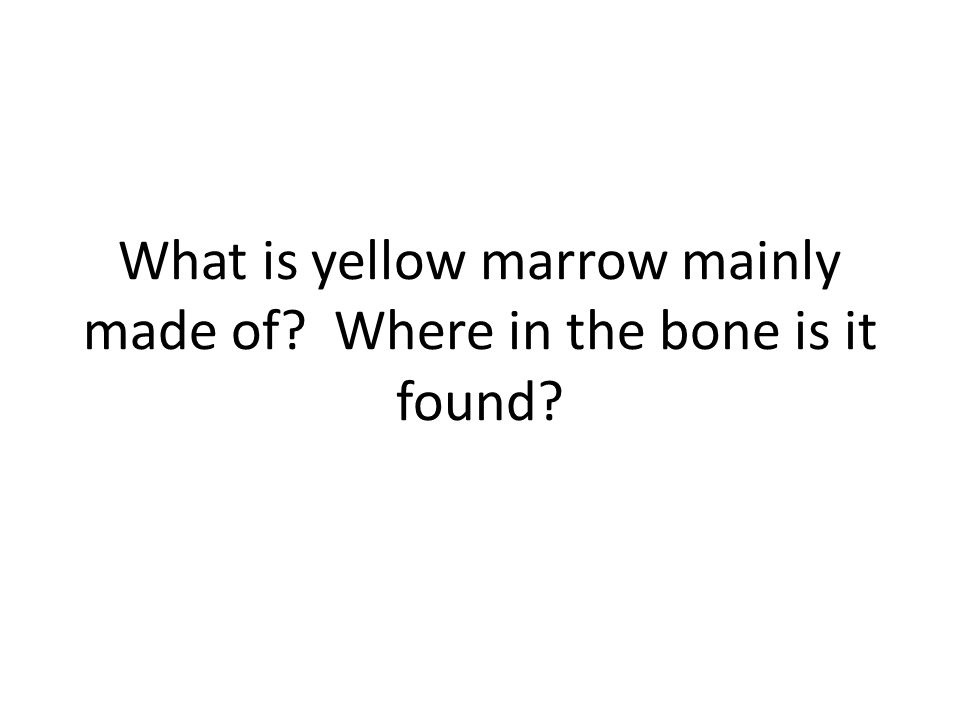 What is yellow marrow mainly made of? Where in the bone is it found?
