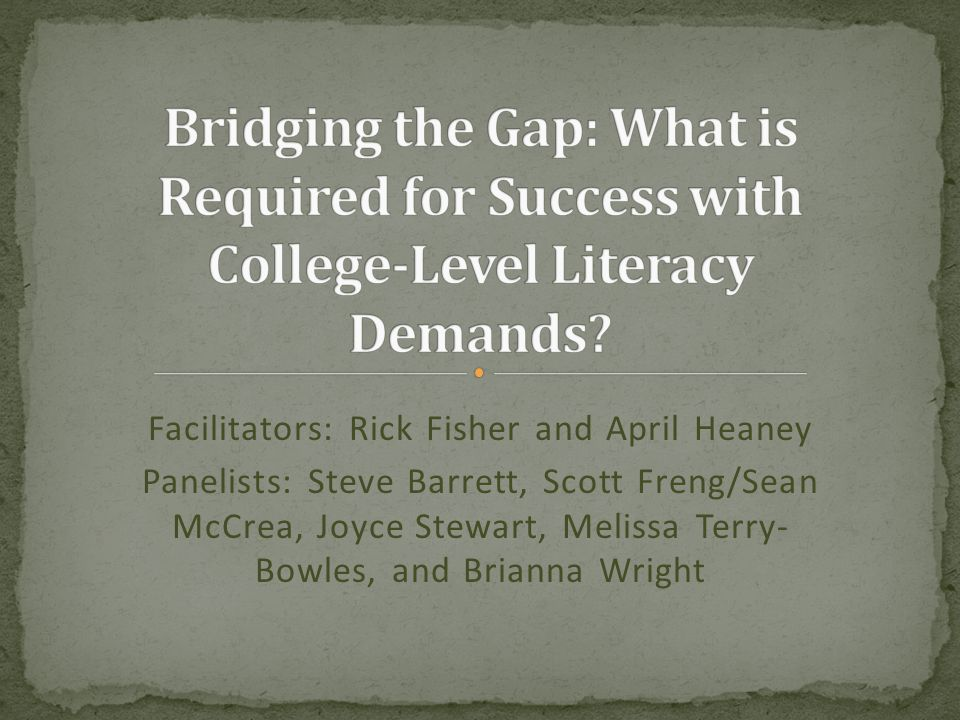 Setting a foundation Hearing from college instructors across the disciplines Exploring some possible ways of bridging the gap Collecting feedback from you about a specific literacy issue: research reading and writing