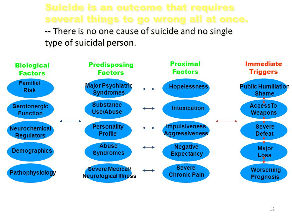 Suicide is an outcome that requires several things to go wrong all at once. -- There is no one cause of suicide and no single type of suicidal person.