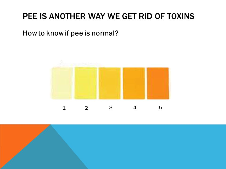 PEE IS ANOTHER WAY WE GET RID OF TOXINS How to know if pee is normal? 12 345