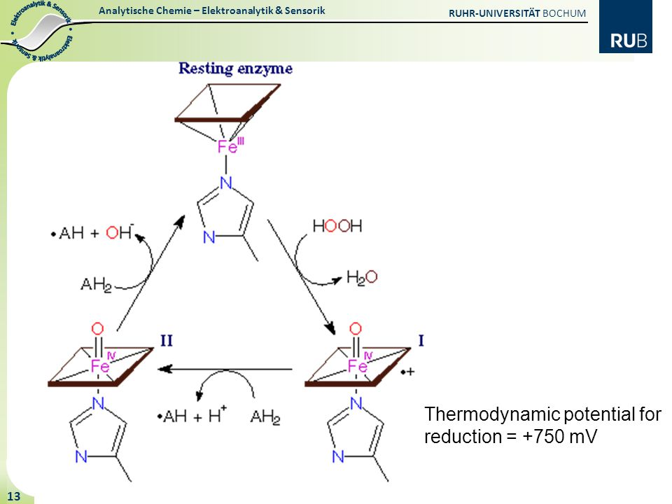 Analytische Chemie – Elektroanalytik & Sensorik RUHR-UNIVERSITÄT BOCHUM 13 Thermodynamic potential for reduction = +750 mV