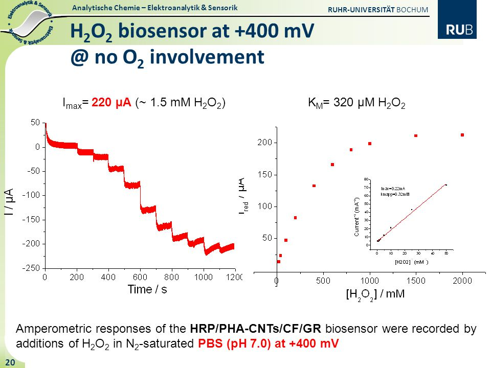 Analytische Chemie – Elektroanalytik & Sensorik RUHR-UNIVERSITÄT BOCHUM 20 H 2 O 2 biosensor at +400 mV @ no O 2 involvement Amperometric responses of the HRP/PHA-CNTs/CF/GR biosensor were recorded by additions of H 2 O 2 in N 2 -saturated PBS (pH 7.0) at +400 mV I max = 220 µA (~ 1.5 mM H 2 O 2 )K M = 320 µM H 2 O 2