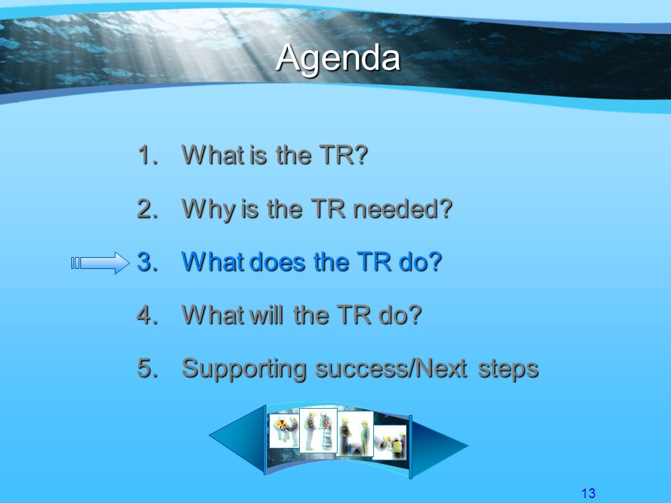13 Agenda 1.What is the TR. 2.Why is the TR needed.