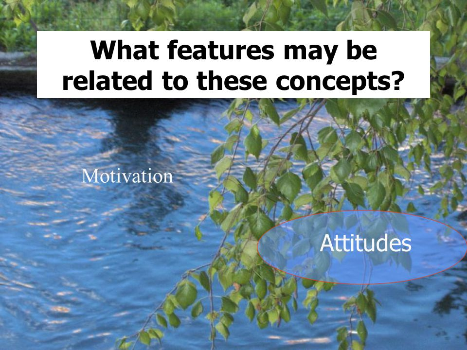 Motivation Attitudes What features may be related to these concepts