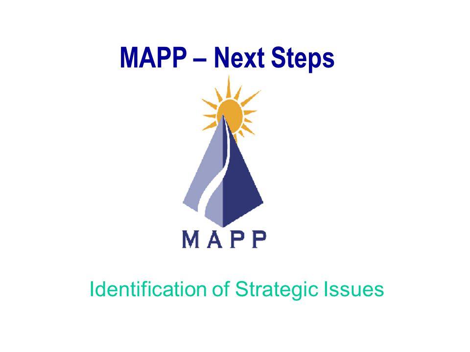 Identification of Strategic Issues MAPP – Next Steps