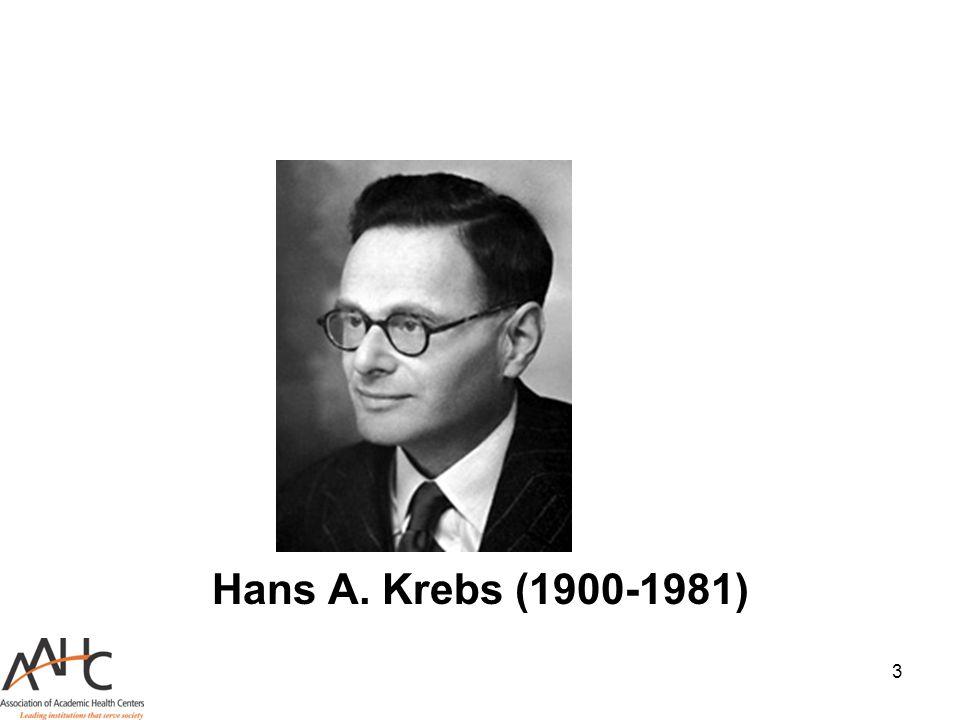 3 Hans A. Krebs (1900-1981)