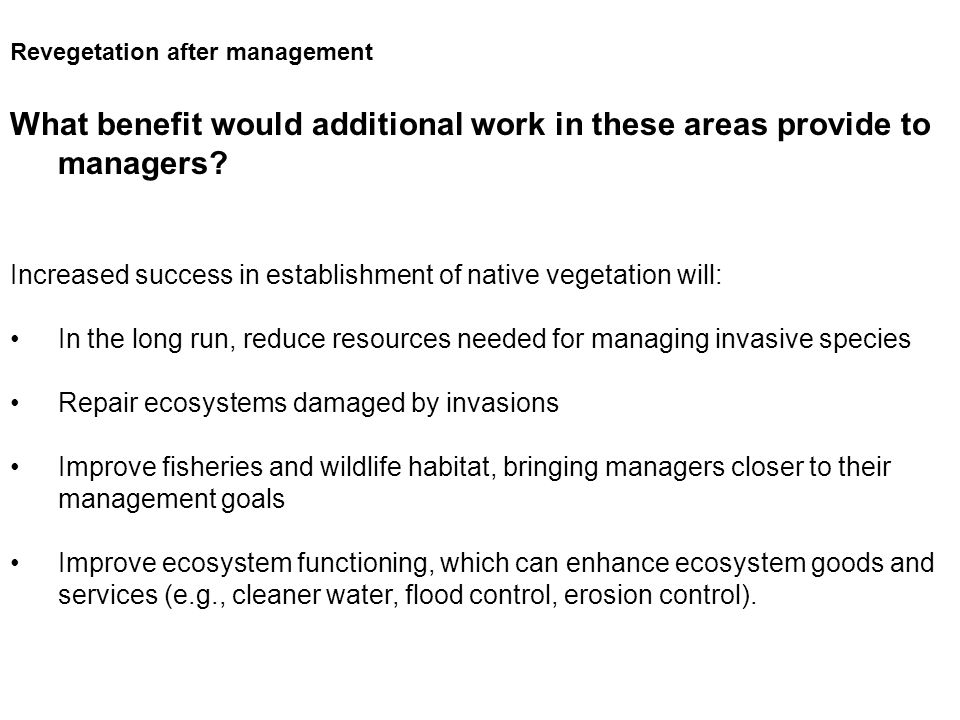 Revegetation after management What benefit would additional work in these areas provide to managers.