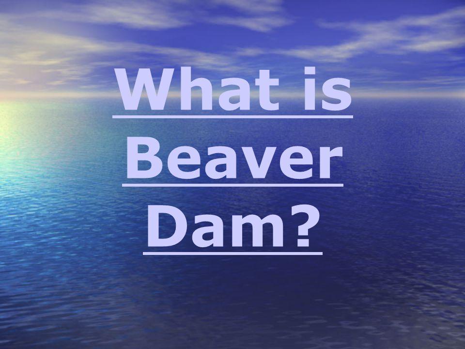What is Beaver Dam?